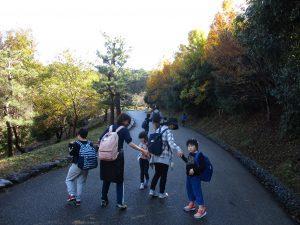 紅葉を眺めながら散策